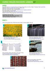 lesson17-guia.pdf