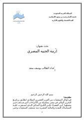 أزمة الجنيه المصري الطالب يوسف سعد.doc